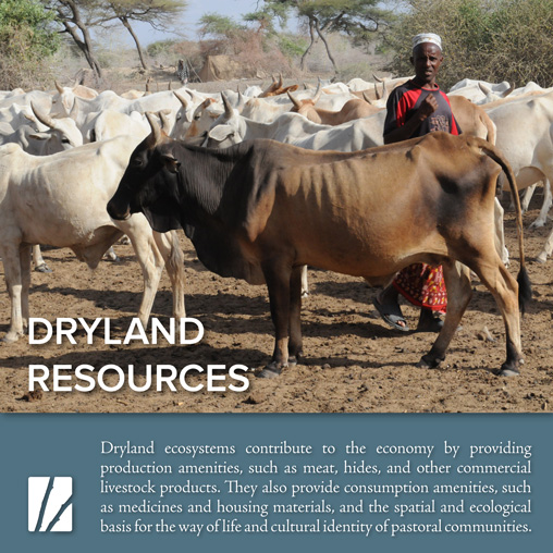 Dryland Resources